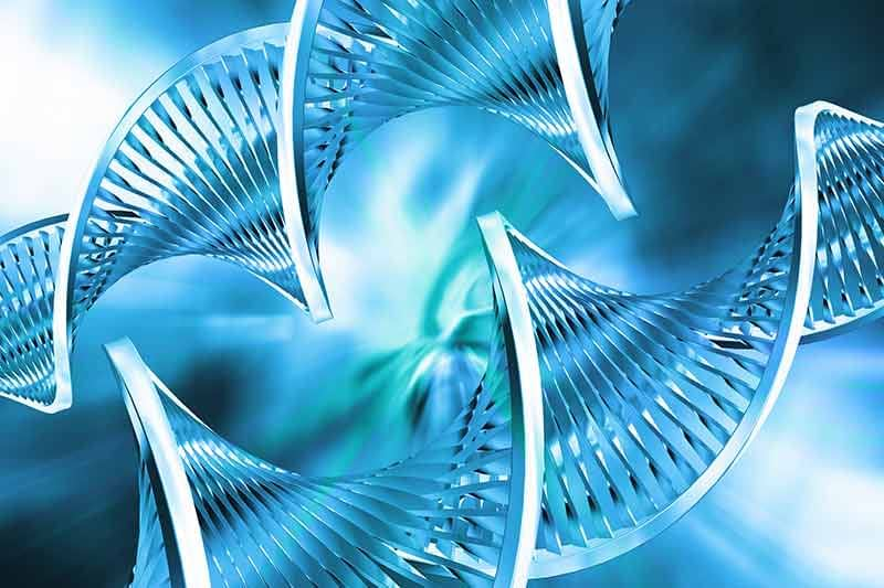 Translating MicroRNA Research Into Clinical Applications