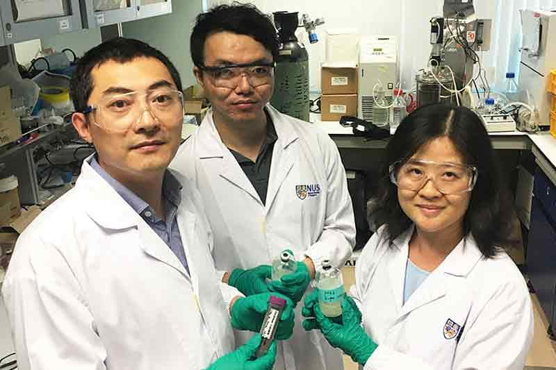 Singapore engineers discover greener and cheaper technique for biofuel production