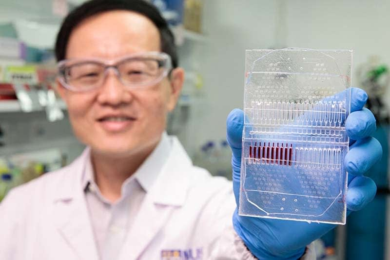 NUS develops cancer cell culture test kit for personalised
