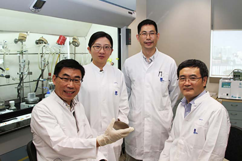 A*STAR researchers develop dragonfly-inspired anti-bacterial nano coating