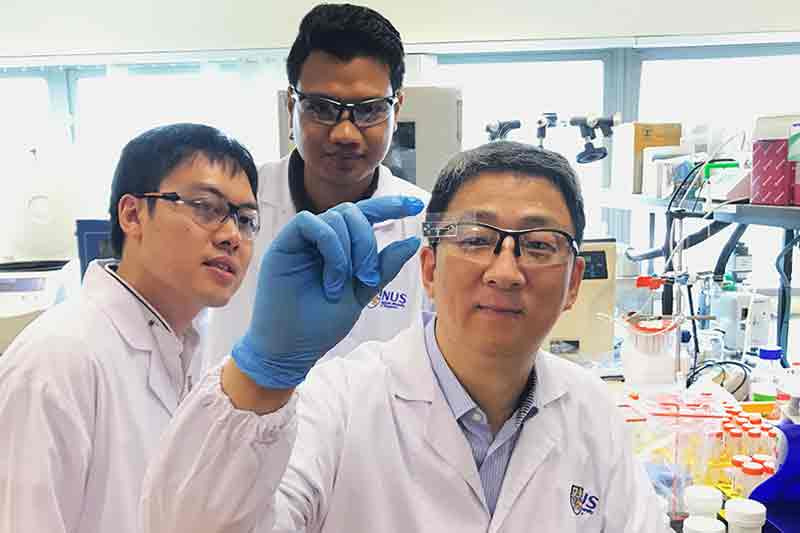 NUS scientists develop novel microfluidic chip for fast